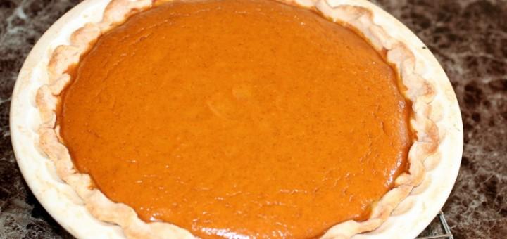 Orange Pumpkin Pie-007