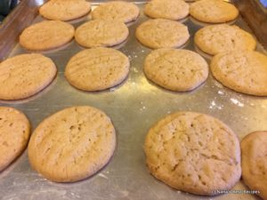 Peanut Butter Cookies-019