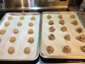 chewy-coconut-cookies-009